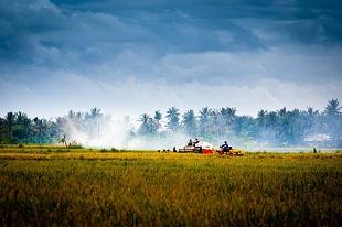 agriculture - vietnam durant notre Circuit Combiné de Laos et Vietnam